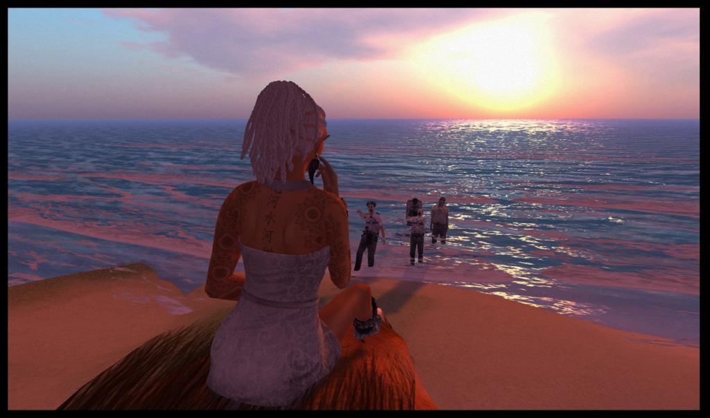 Beach scene: Corvus Silver Classy Dress.